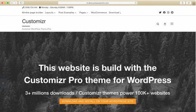 Theme WordPress customizr