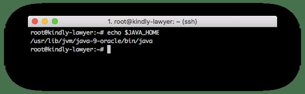Biến java home variable