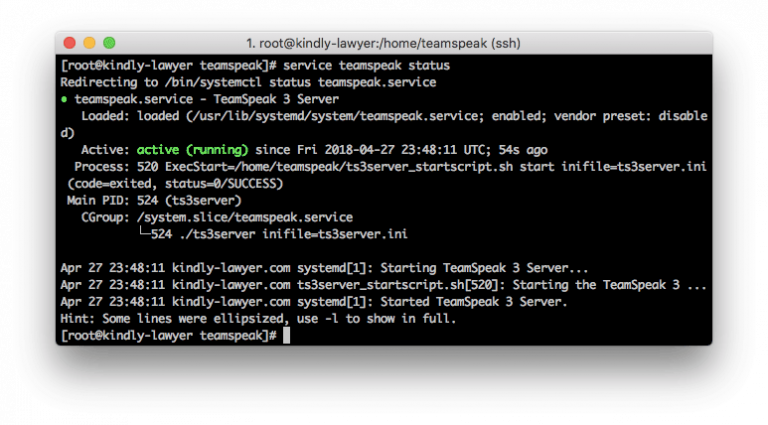 kiểm tra tình trạng ts3 server