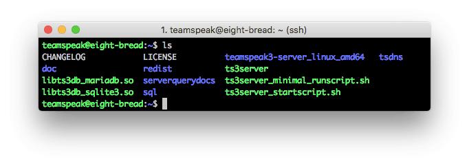 nội dung server teamspeak 3