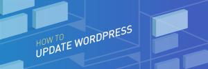 Làm thế nào để update wordpress