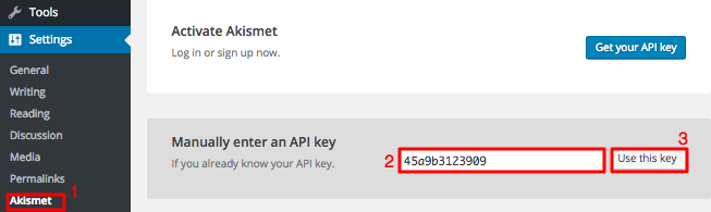 nhập key api akismet wordpress