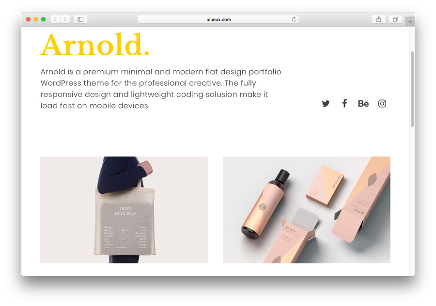 mẫu portfolio theme wordpress arnold