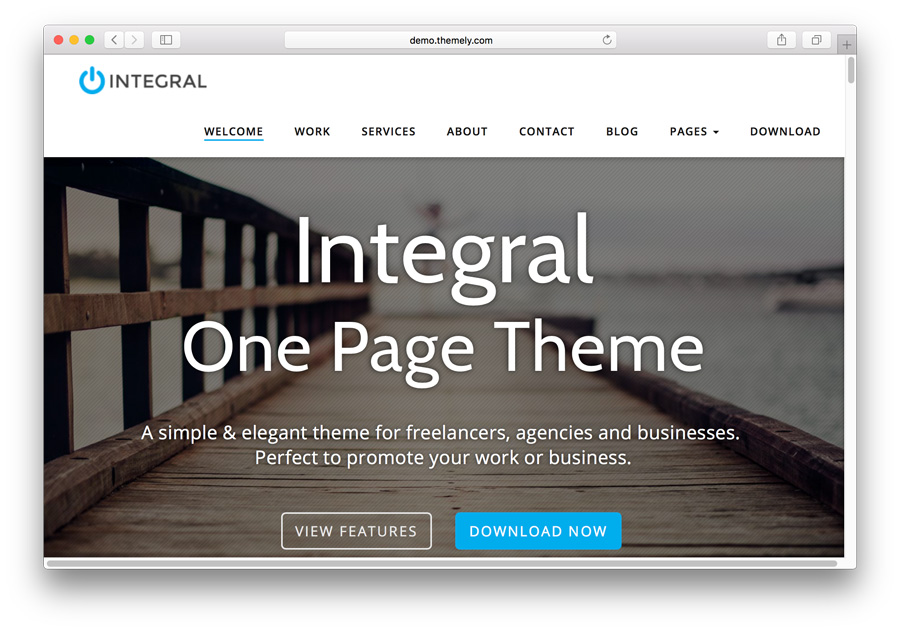theme wordpress portfolio mẫu Integral