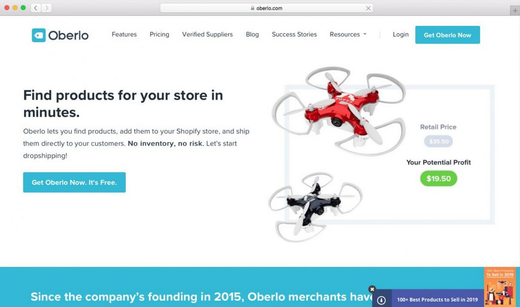 dropshipping website - online business idea